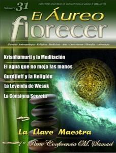 revista31