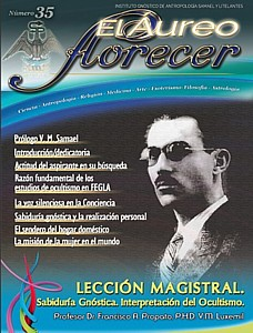 revista35